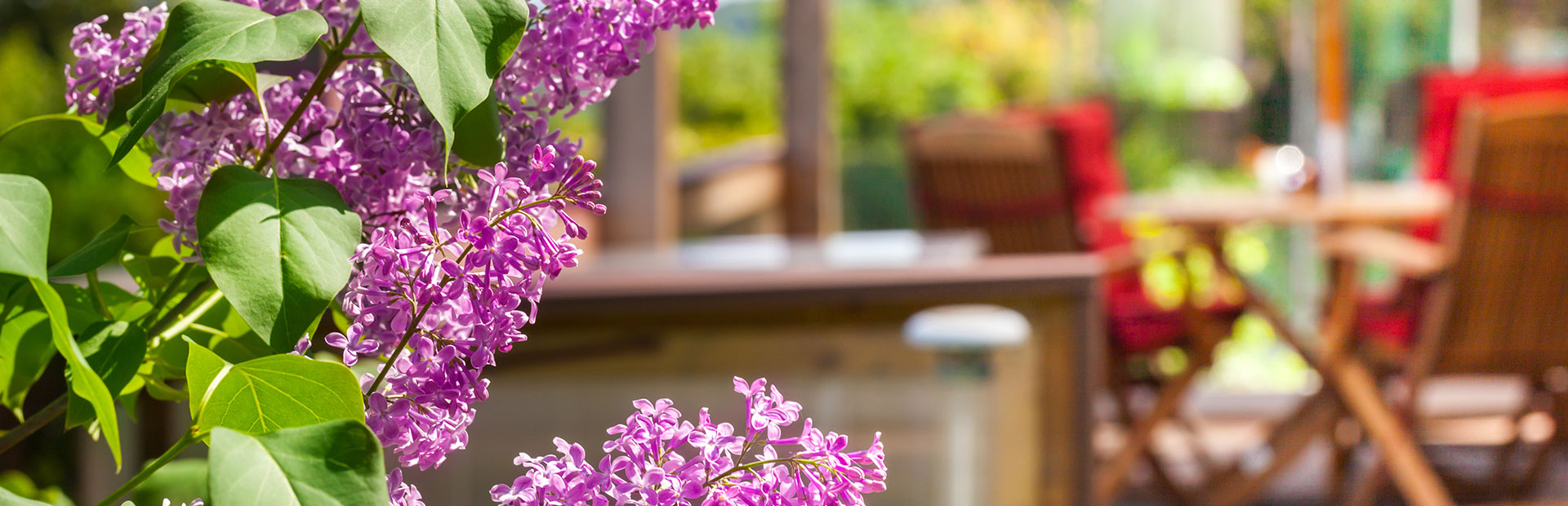http://derstinelandscaping.com/wp-content/uploads/2019/08/lilacs-patio-slider.jpg